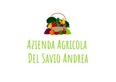 Azienda Agricola Del Savio Andrea