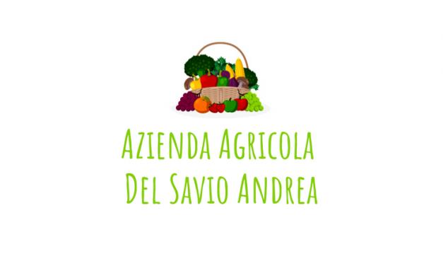 Agricola Del Savio Andrea Farm